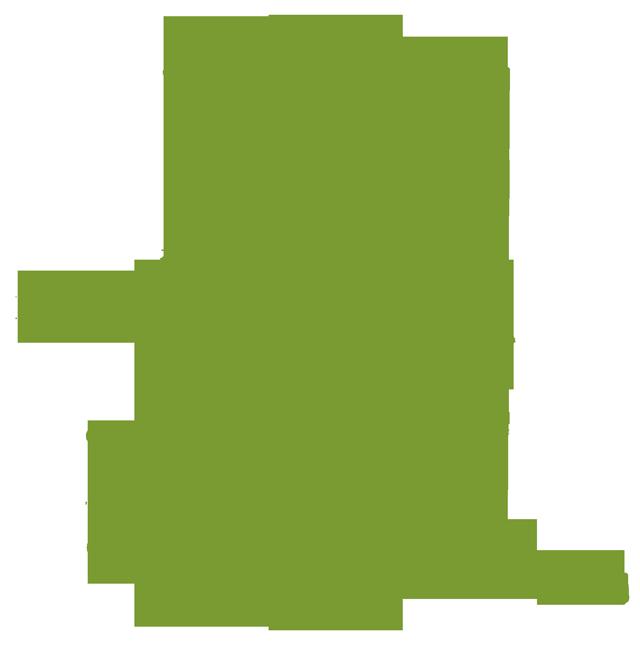 Strength gym equipment